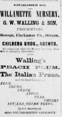 Seattle Post-Intelligencer Apr 27 1878